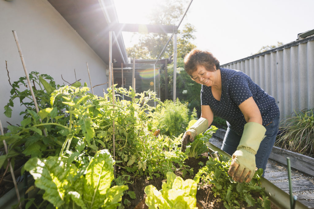Woman gardening at her home